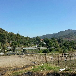 Code 279 Land for sale,…